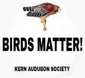 Birds Matter Kern Audubon Society