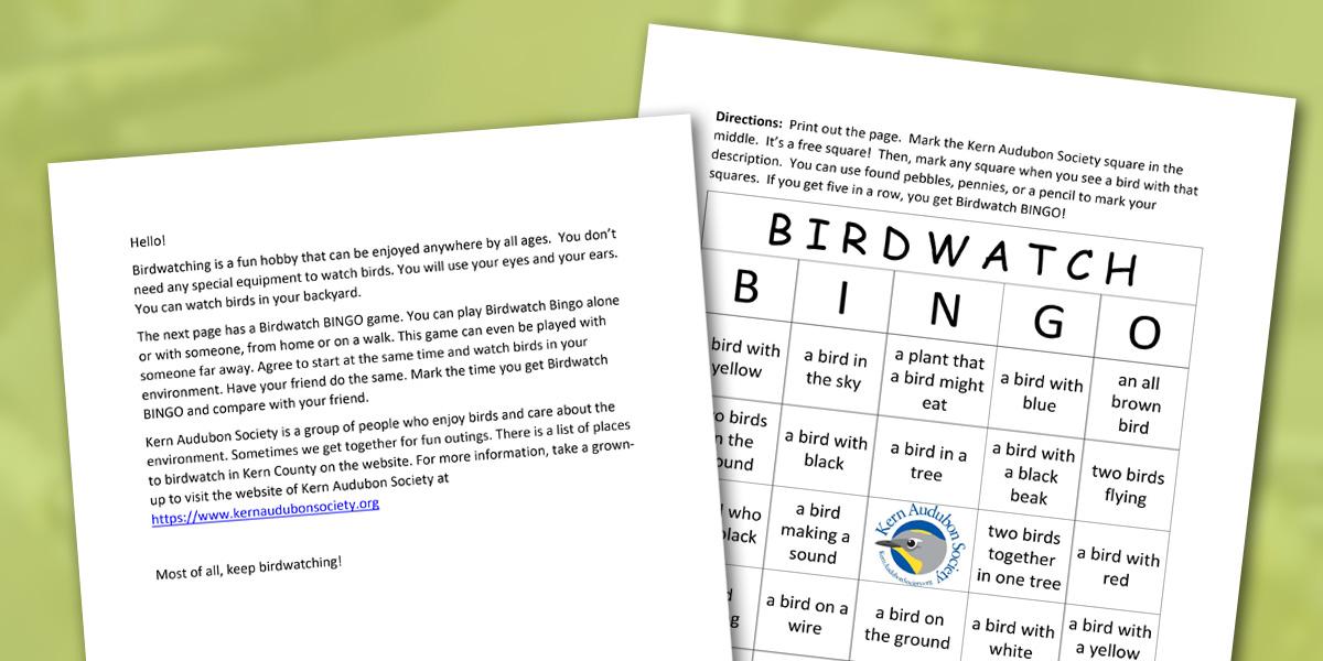 Birdwatch Bingo Game